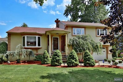 Fair Lawn Single Family Home For Sale: 38-40 Paterson Street