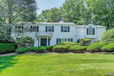 Woodcliff Lake Single Family Home For Sale: 17 Blueberry Drive