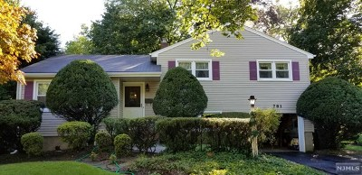 Paramus Single Family Home For Sale: 781 Pascack Road