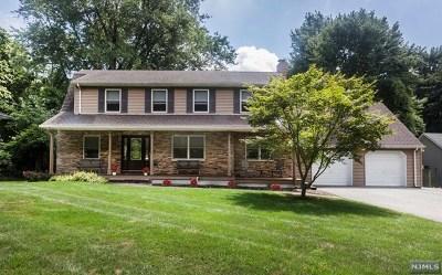 Park Ridge Single Family Home For Sale: 71 South 3rd Street
