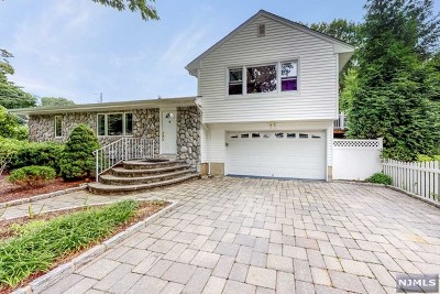 Montvale Single Family Home For Sale: 17 Delores Drive
