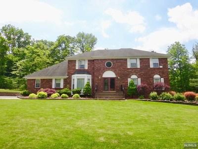 Randolph Township Single Family Home For Sale: 4 Viking Court