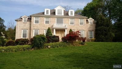Park Ridge Single Family Home For Sale: 91 Mill Road