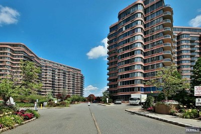 Cliffside Park Condo/Townhouse For Sale: 100 Winston Drive #6 D-N