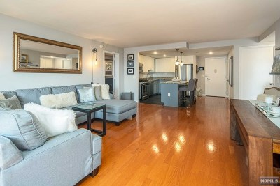 Jersey City Condo/Townhouse For Sale: 700 Grove Street #9a