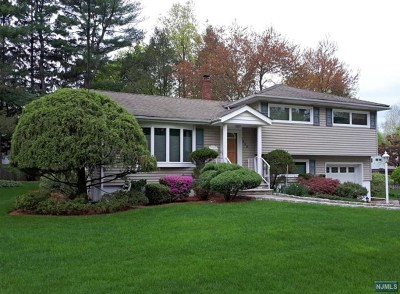 Paramus Single Family Home For Sale: 659 Pascack Road