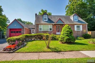 New Milford Single Family Home For Sale: 246 Azalea Drive