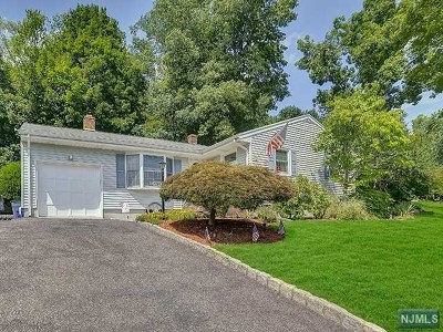 Park Ridge Single Family Home For Sale: 172 Pascack Road