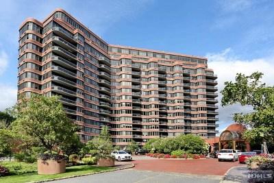 Cliffside Park Condo/Townhouse For Sale: 100 Winston Drive #9k N