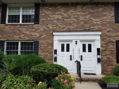 Teaneck Condo/Townhouse For Sale: 132 East Maple Street #132