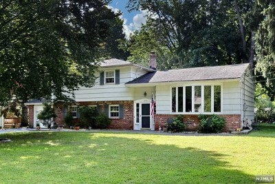 Hillsdale Single Family Home For Sale: 272 Cambridge Road
