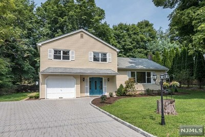 Upper Saddle River Single Family Home For Sale: 33 Lake Road