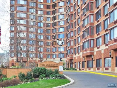 Fort Lee Condo/Townhouse For Sale: 100 Old Palisade Road #1904