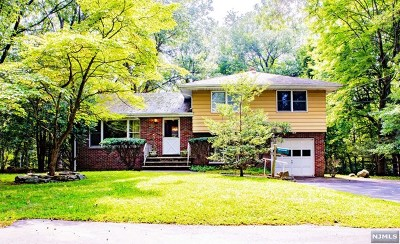 Closter Single Family Home For Sale: 146 Maple Avenue