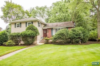 Oradell Single Family Home For Sale: 311 Merritt Drive
