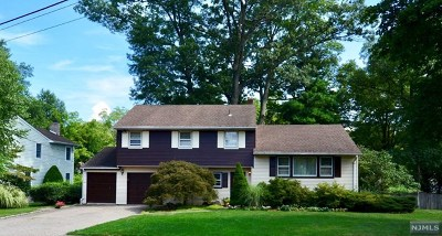 Cresskill Single Family Home For Sale: 41 Buckingham Road