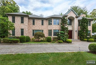 Englewood Cliffs Single Family Home For Sale: 30 Booth Avenue