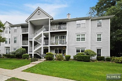 Mahwah Condo/Townhouse For Sale: 597 Lilac Lane