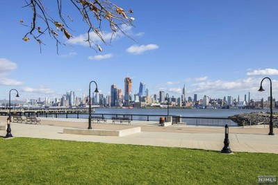 Hoboken Condo/Townhouse For Sale: 1100 Maxwell Lane #241
