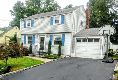 Fair Lawn Single Family Home For Sale: 1-25 33rd Street