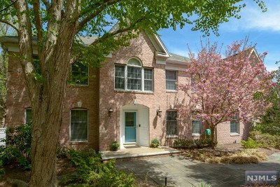 Mahwah Single Family Home For Sale: 5 Knichel Road