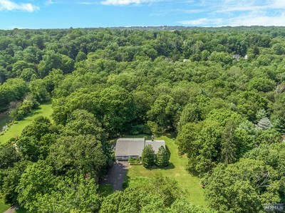 Saddle River Single Family Home For Sale: 241 East Saddle River Road