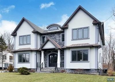 Morris County Single Family Home For Sale: 16 Schneider Lane