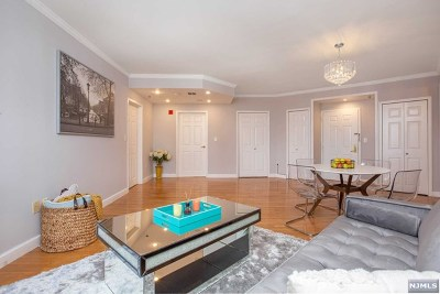 Fort Lee Condo/Townhouse For Sale: 100 Old Palisade Road #2616