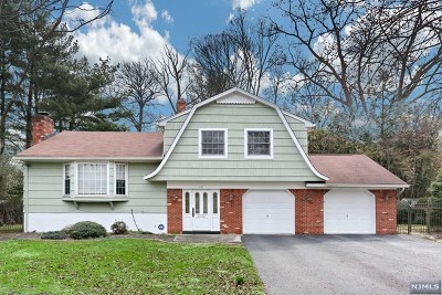 Paramus Single Family Home For Sale: 238 Beechwood Drive