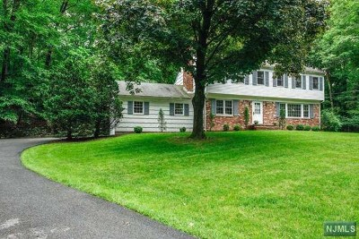 Upper Saddle River Single Family Home For Sale: 30 Rambling Brook Road