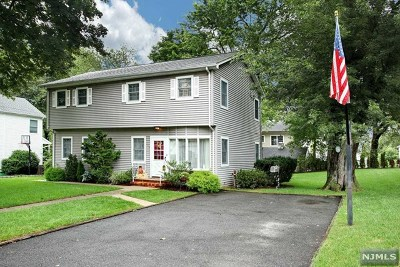 Cresskill Single Family Home For Sale: 322 Brookside Avenue