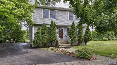 Fair Lawn Single Family Home For Sale: 19-01 11th Street