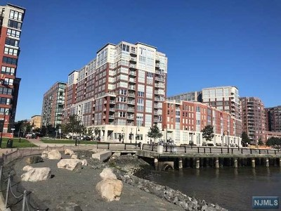 Hoboken Condo/Townhouse For Sale: 1125 Maxwell Lane #534