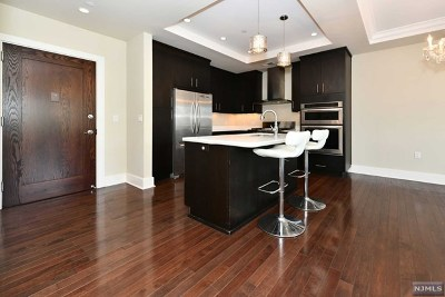 Hudson County Condo/Townhouse For Sale: 250 Henley Place #207