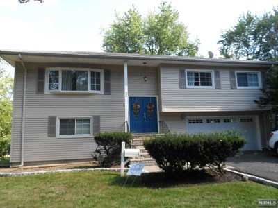 Paramus Single Family Home For Sale: 136 Spring Valley Road