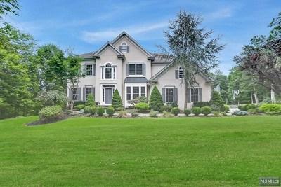 Ringwood Single Family Home For Sale: 8 Dawn Lane
