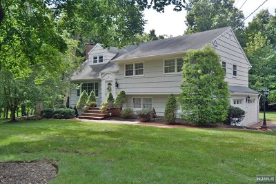 Upper Saddle River Single Family Home For Sale: 38 Stone Ledge Road