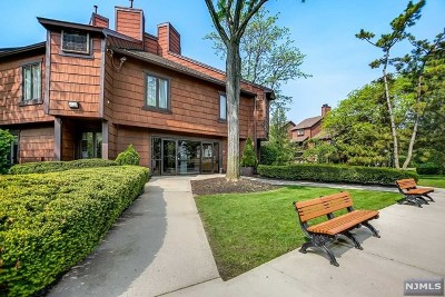 Secaucus Condo/Townhouse For Sale: 602 Sanderling Court