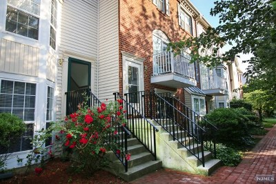 Jersey City Condo/Townhouse For Sale: 19 Cottonwood Street