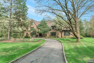Saddle River Single Family Home For Sale: 3 Kenwood Road