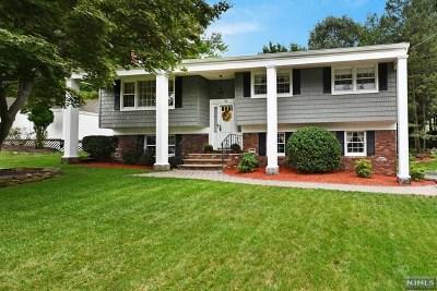Oakland Single Family Home For Sale: 23 Cayuga Avenue