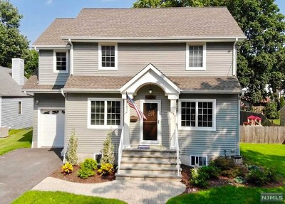 New Milford Single Family Home For Sale: 443 Central Park Drive