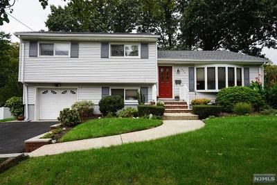 New Milford Single Family Home For Sale: 377 Shea Drive