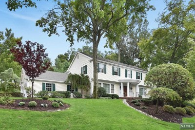 Oradell Single Family Home For Sale: 704 Blauvelt Drive