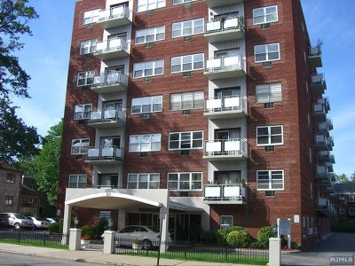 Hackensack NJ Condo/Townhouse For Sale: $175,000