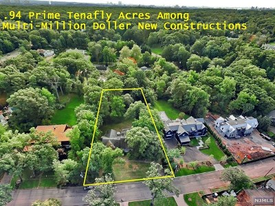 Tenafly Single Family Home For Sale: 63 Oxford Drive