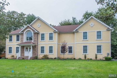 Morris County Single Family Home For Sale: 12 Aida Court