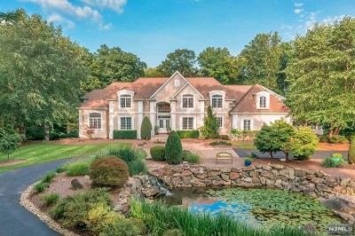 Morris County Single Family Home For Sale: 100 Fayson Lakes Road