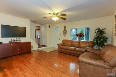 Cresskill Single Family Home For Sale: 228 Grant Avenue