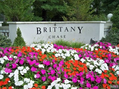 Wayne Condo/Townhouse For Sale: 316 Brittany Drive #Bldg3/2n